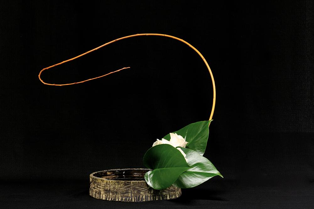 Arrangement floral Ikebana